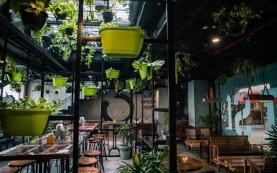 Skønne spisesteder du kan besøge i Danmark
